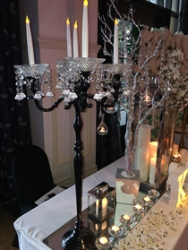 Picture of Black Candelabra